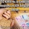 Tc Kimlik No ile Emeklilik Hesaplama